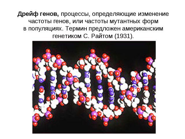 Дрейф генов,процессы, определяющие изменение частоты генов, или частоты мута...