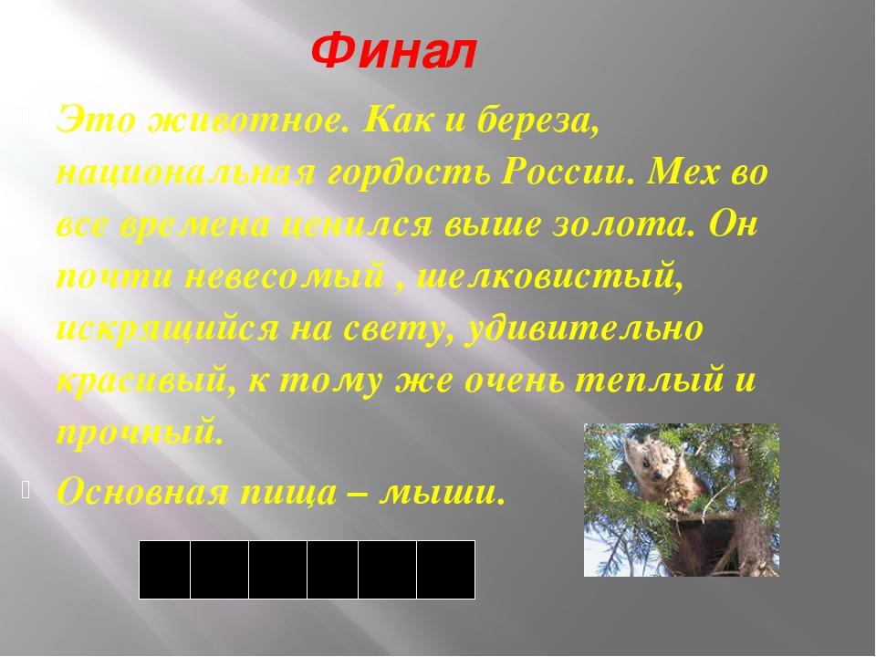 Финал Это животное. Как и береза, национальная гордость России. Мех во все вр...