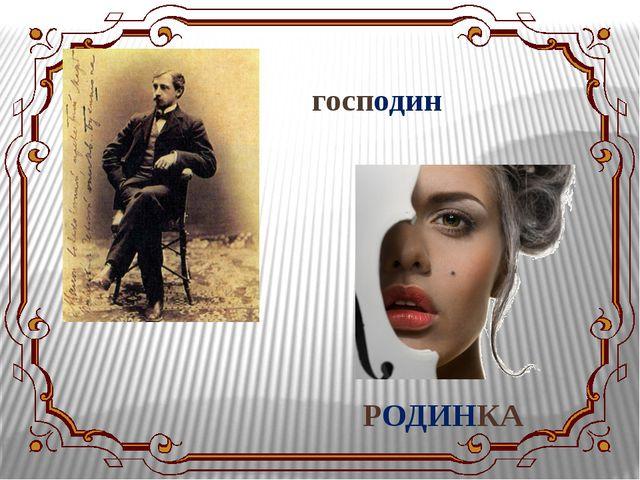 господин РОДИНКА