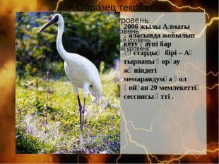 2006 жылы Алматы қаласында жойылып кету қаупі бар құстардың бірі – Ақ тырнан