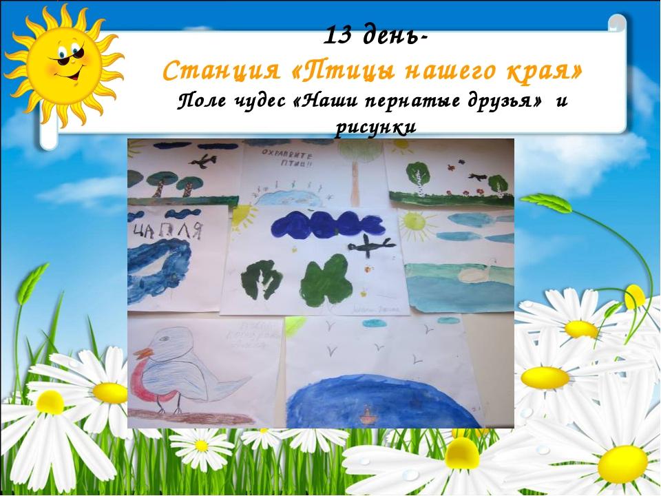 13 день- Станция «Птицы нашего края» Поле чудес «Наши пернатые друзья» и рису...