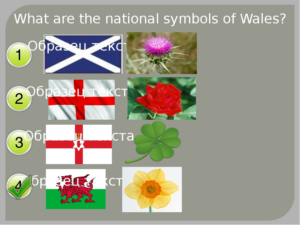 What are the national symbols of Wales?