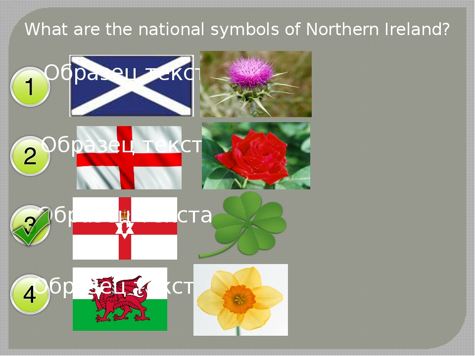 What are the national symbols of Northern Ireland?