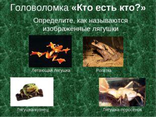 Головоломка «Кто есть кто?» Определите, как называются изображённые лягушки Л