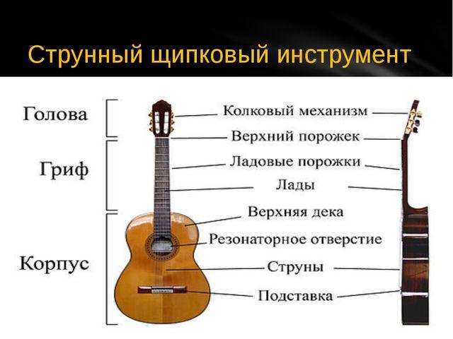 Струнный щипковый инструмент