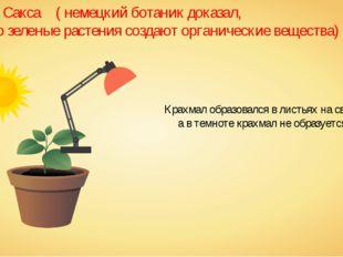 Опыт Сакса ( немецкий ботаник доказал, что зеленые растения создают органиче