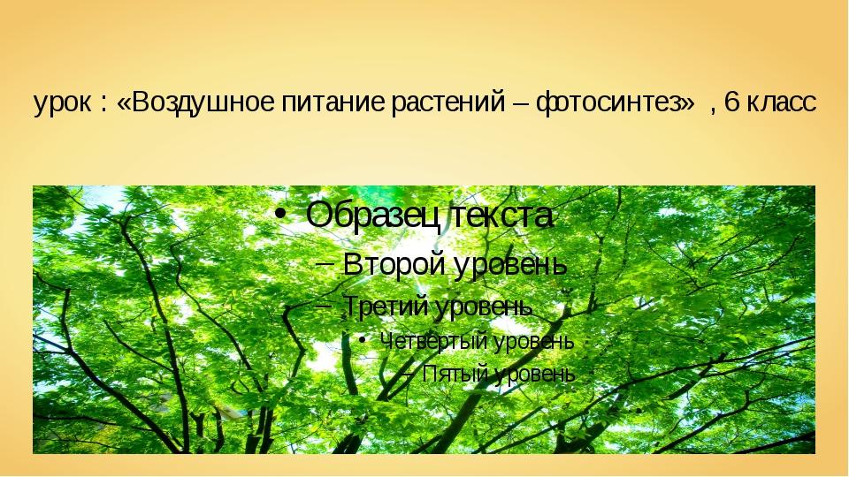 урок : «Воздушное питание растений – фотосинтез» , 6 класс