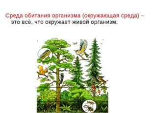 Среда обитания организма (окружающая среда) – это всё, что окружает живой орг
