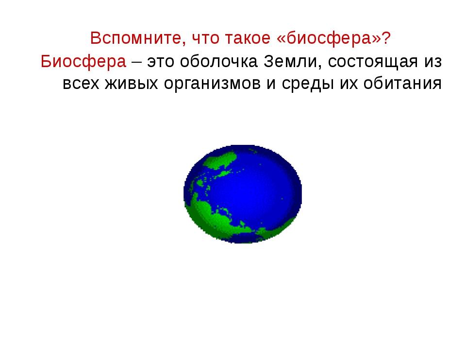 Биосфера – это оболочка Земли, состоящая из всех живых организмов и среды их...