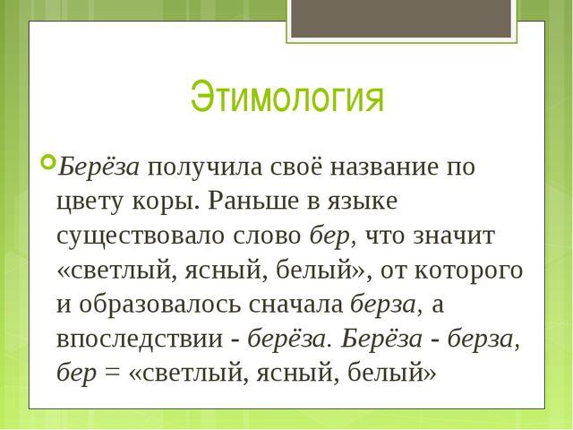 Этимология Берёза получила своё название по цвету коры. Раньше в языке сущест...