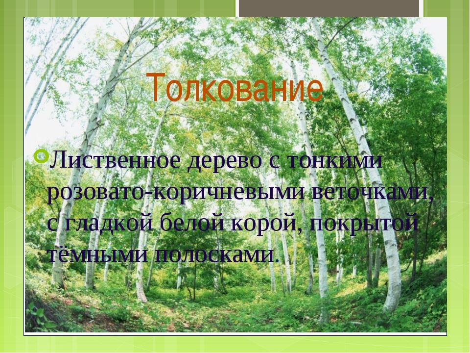 Толкование Лиственное дерево с тонкими розовато-коричневыми веточками, с гла...
