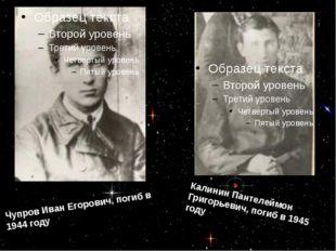 Чупров Иван Егорович, погиб в 1944 году Калинин Пантелеймон Григорьевич, пог
