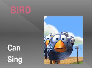 BIRD Can Sing