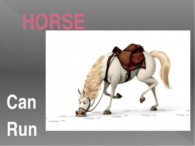 HORSE Can Run