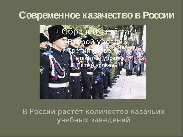 Современное казачество в России В России растёт количество казачьих учебных з...