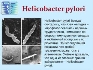 Helicobacter pylori Всегда считалось, что язва желудка – «профзаболевание» не