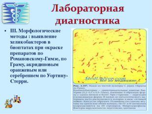 III. Морфологические методы : выявление хеликобактеров в биоптатах при окраск