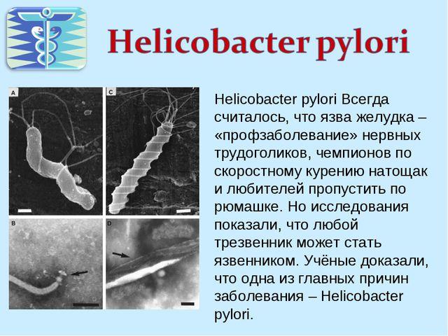Helicobacter pylori Всегда считалось, что язва желудка – «профзаболевание» не...