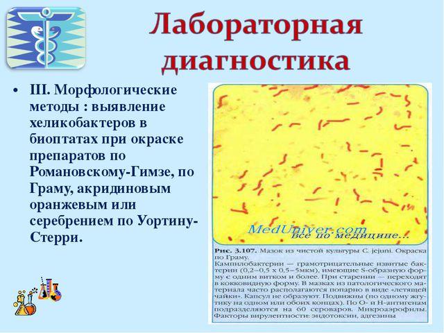 III. Морфологические методы : выявление хеликобактеров в биоптатах при окраск...
