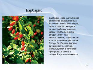 * Барбарис Барбарис - род кустарников семейства барбарисовых. Включает около