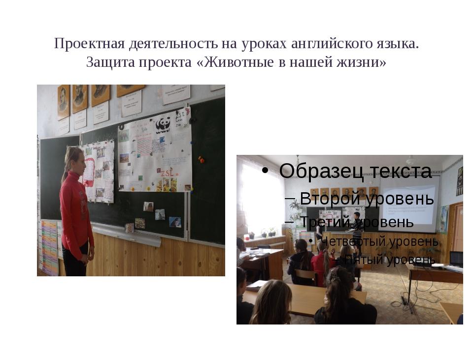 Проектная деятельность на уроках английского языка. Защита проекта «Животные...