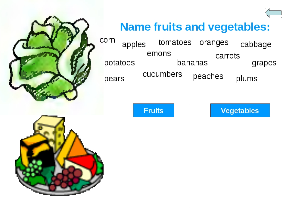 Name fruits and vegetables: corn apples tomatoes oranges cabbage potatoes lem...