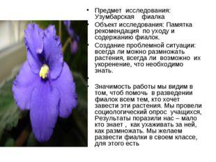 Предмет исследования: Узумбарская фиалка Объект исследования: Памятка рекомен