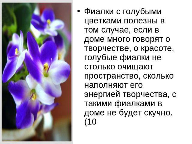 Фиалки с голубыми цветками полезны в том случае, если в доме много говорят о...