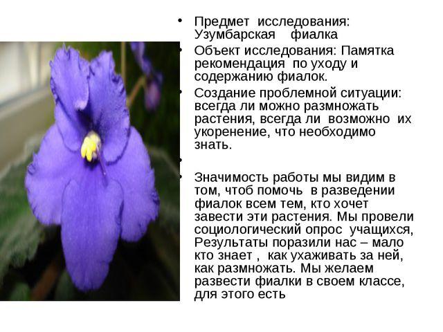 Предмет исследования: Узумбарская фиалка Объект исследования: Памятка рекомен...