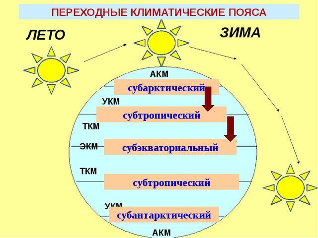 АКМ УКМ ЭКМ ТКМ ТКМ УКМ АКМ субарктический субтропический субэкваториальный...