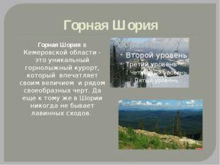 Горная Шория Горная Шория в Кемеровской области - это уникальный горнолыжный