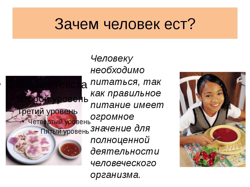 Зачем человек ест? Человеку необходимо питаться, так как правильное питание и...