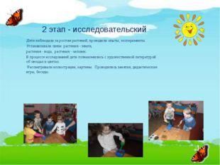 2 этап - исследовательский Дети наблюдали за ростом растений, проводили опыт