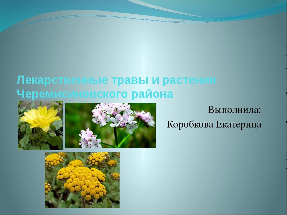 Лекарственные травы и растения Черемисиновского района Выполнила: Коробкова Е...