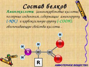 Состав белков Аминокислоты (аминокарбоновые кислоты) — полярные соединения,