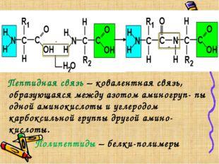 Пептидная связь – ковалентная связь, образующаяся между азотом аминогруп- пы