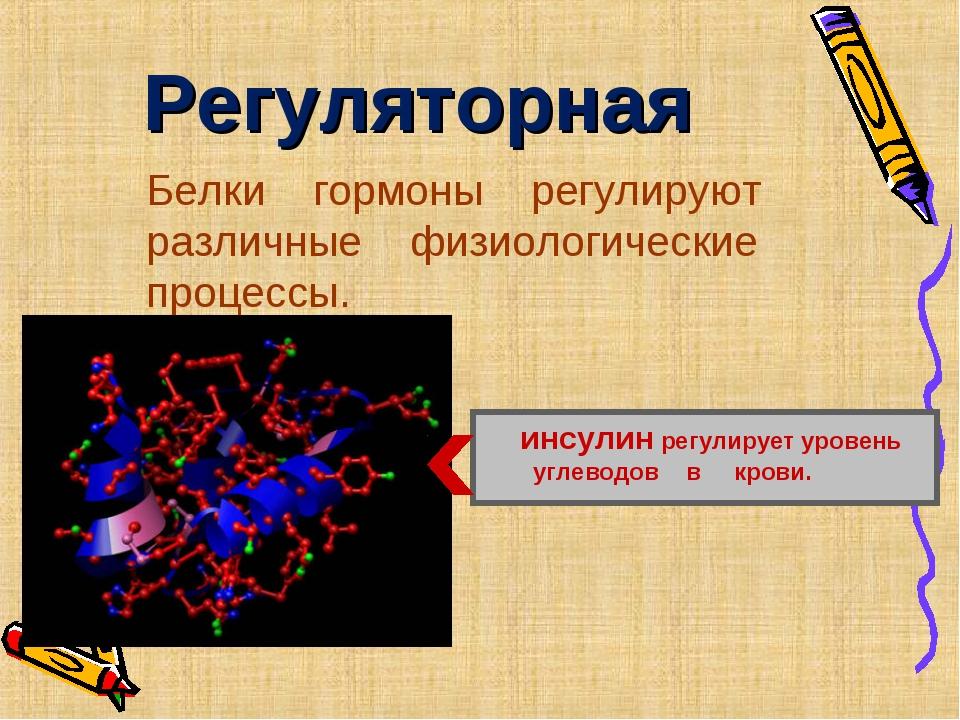 Регуляторная Белки гормоны регулируют различные физиологические процессы. инс...