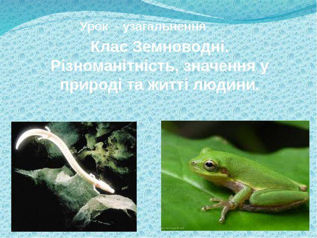 Урок - узагальнення Клас Земноводні. Різноманітність, значення у природі та...