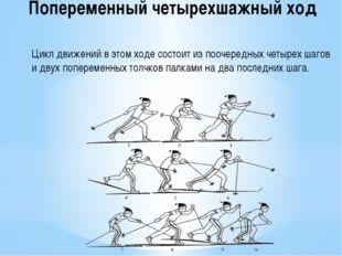 Попеременный четырехшажный ход Цикл движений в этом ходе состоит из поочередн