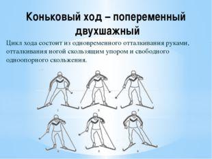 Коньковый ход – попеременный двухшажный Цикл хода состоит из одновременного о