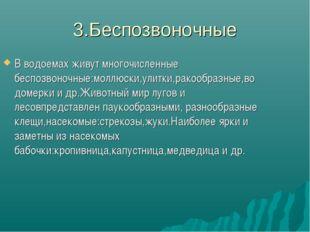 3.Беспозвоночные В водоемах живут многочисленные беспозвоночные:моллюски,улит