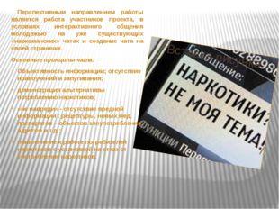 Перспективным направлением работы является работа участников проекта, в услов