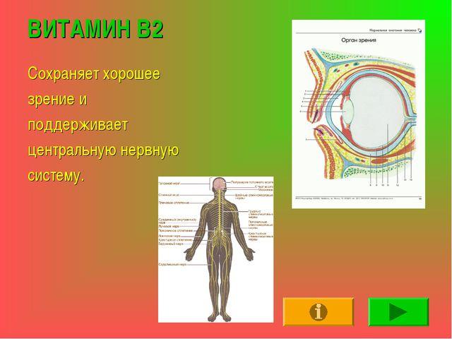 ВИТАМИН В2 Сохраняет хорошее зрение и поддерживает центральную нервную систему.