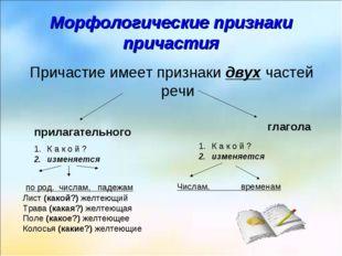 Морфологические признаки причастия Причастие имеет признаки двух частей речи