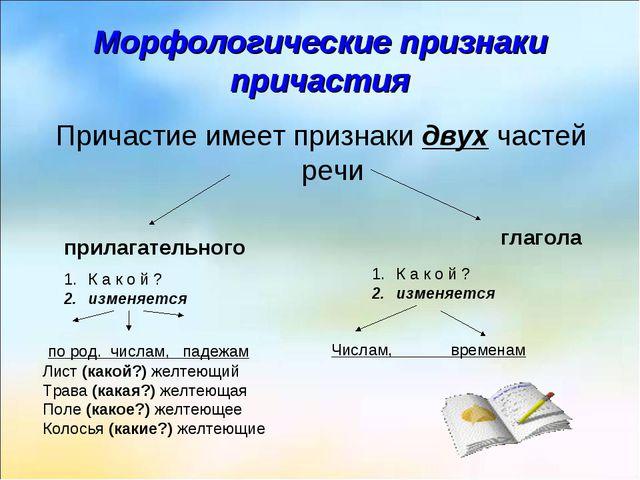 Морфологические признаки причастия Причастие имеет признаки двух частей речи...