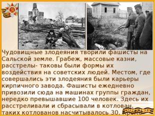 Чудовищные злодеяния творили фашисты на Сальской земле. Грабеж, массовые казн