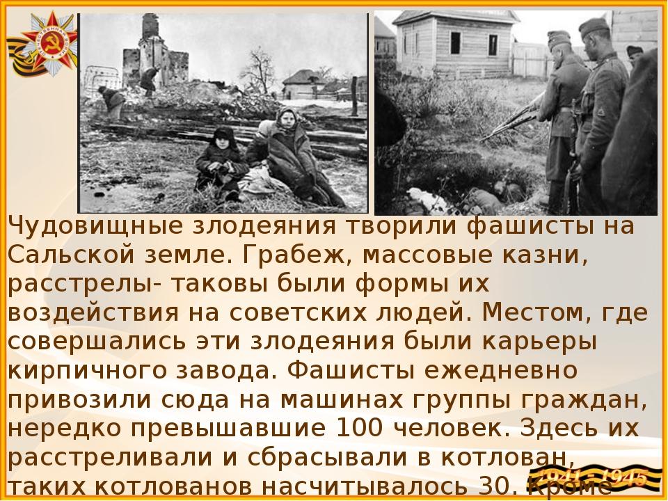 Чудовищные злодеяния творили фашисты на Сальской земле. Грабеж, массовые казн...