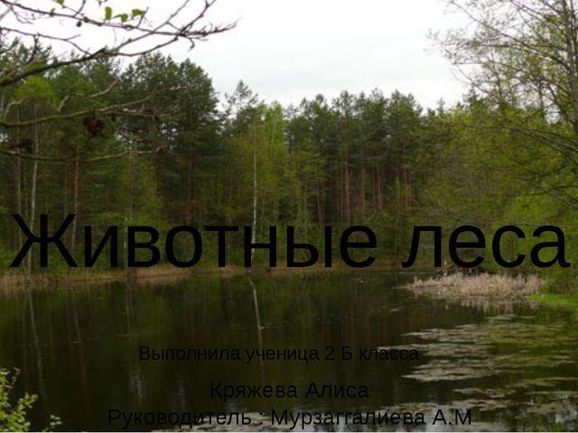 Учебный проект Выполнила ученица 2 Б класса Кряжева Алиса Животные леса Выпо...