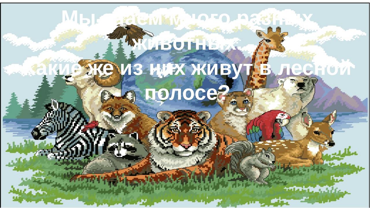 . Мы знаем много разных животных. Какие же из них живут в лесной полосе?