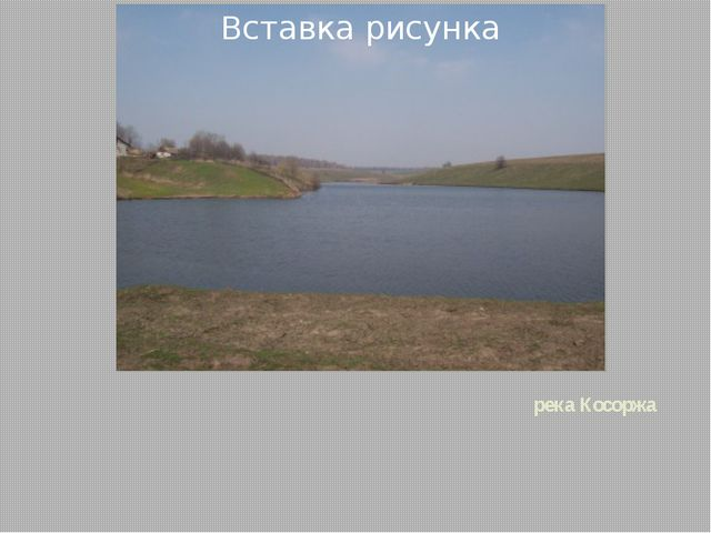 река Косоржа